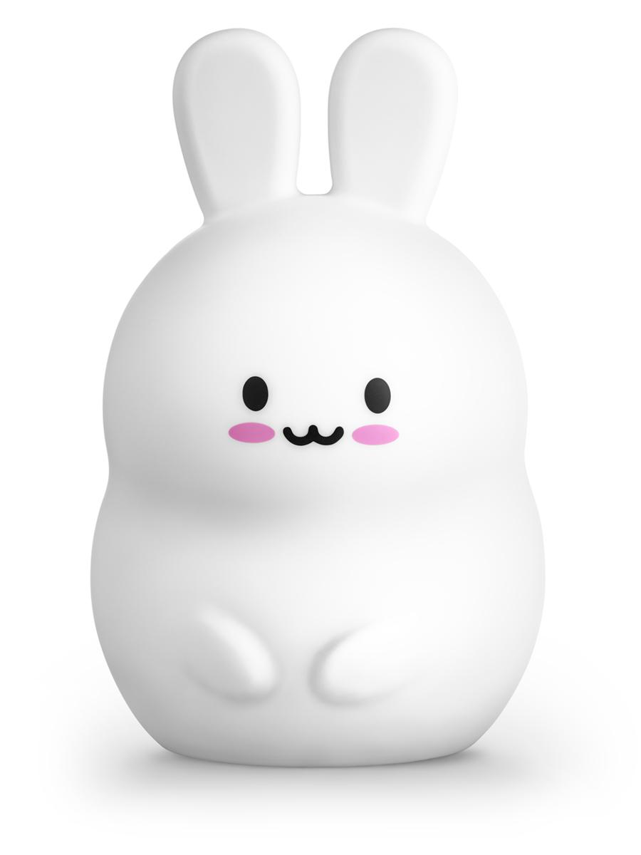 Zdjęcia królika na białym tle